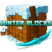 Winter Blocks